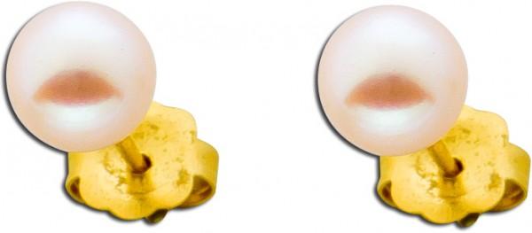 Ohrringe – Ohrstecker Gold 585 Süßwasserzuchtperle Perlenschmuck