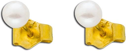 Ohrringe – Ohrstecker Gelbgold 333...